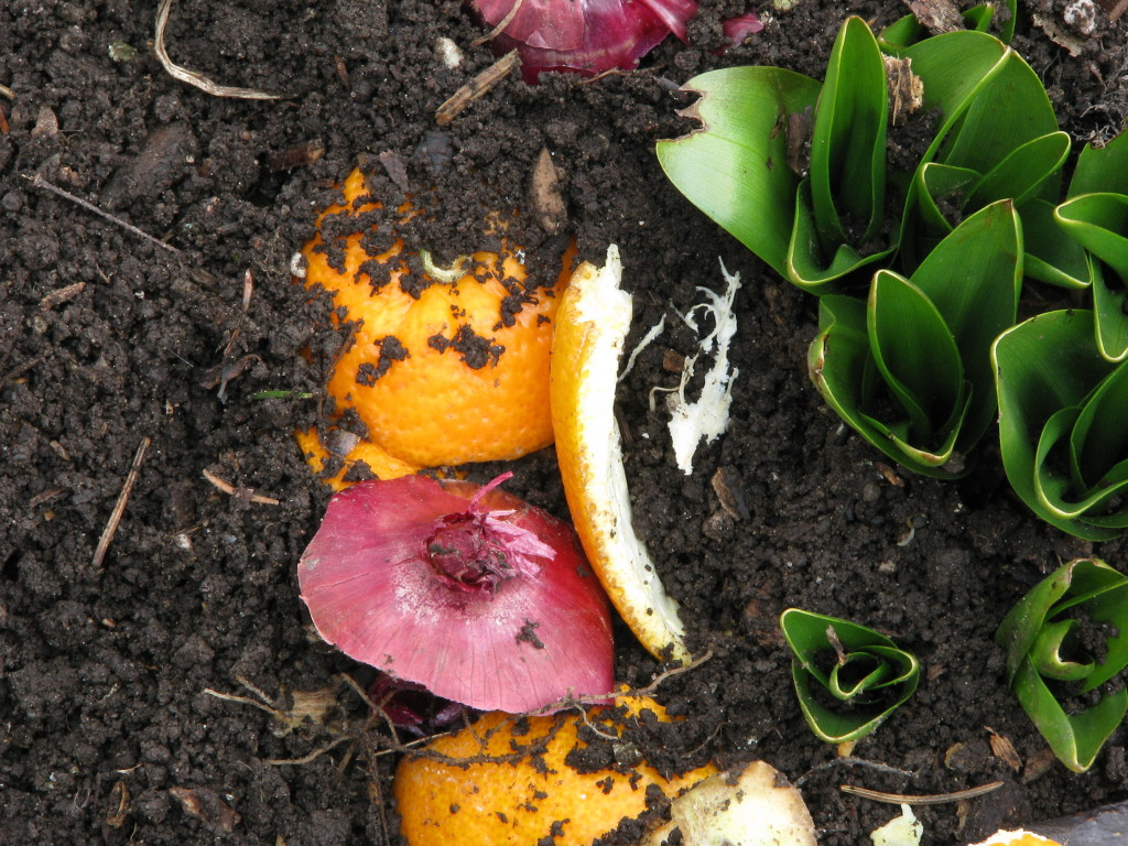 Organic Waste Recycling Program for Manufacturing